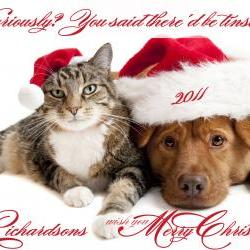 "Photo Christmas Card Pets Dog Cat Pet Photo Card - 7"" x 5"""